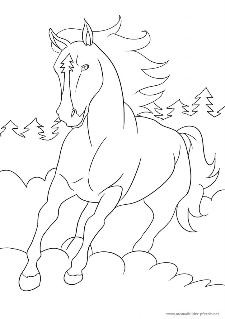 mein drittes ausmalbild mit pferd  kostenlos