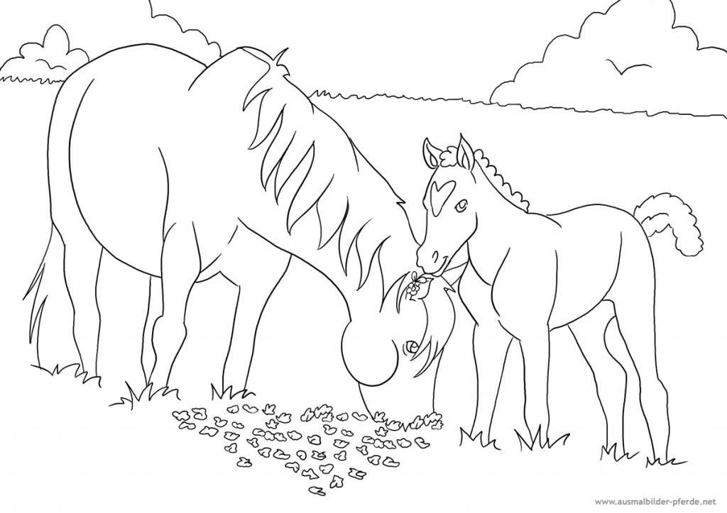 als siebtes ausmalbild mit pferden ein pferd mit fohlen