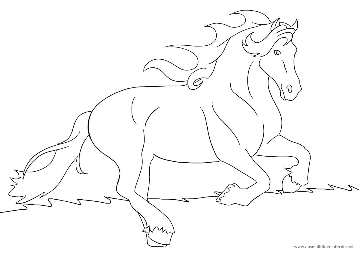 pferde-ausmalbild nummer 8 | ausmalbilder pferde - viele