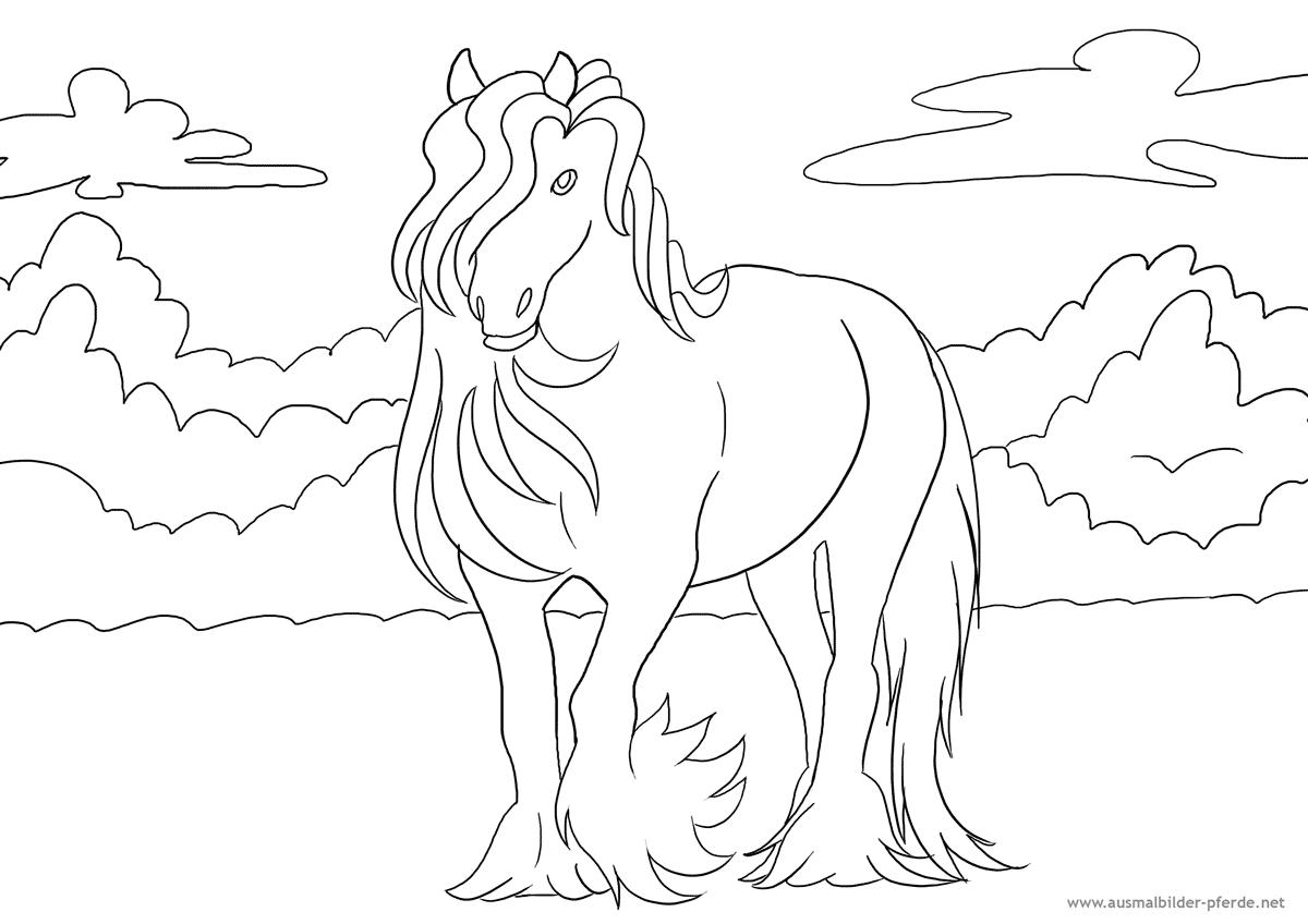Ausmalbild Pferd Nr. 9