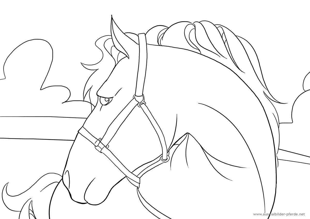 Ausmalbild Pferd Nr. 12