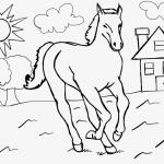 Pferde-Ausmalbild Nr. 1