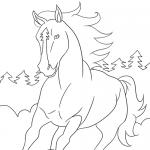 Pferde-Ausmalbild Nr. 3