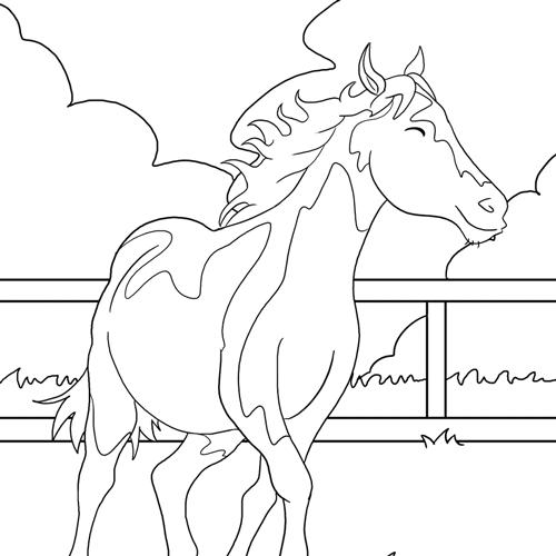 ausmalbildpferd04starter  ausmalbilder pferde  viele