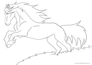 Ausmalbild Pferd Nr. 14