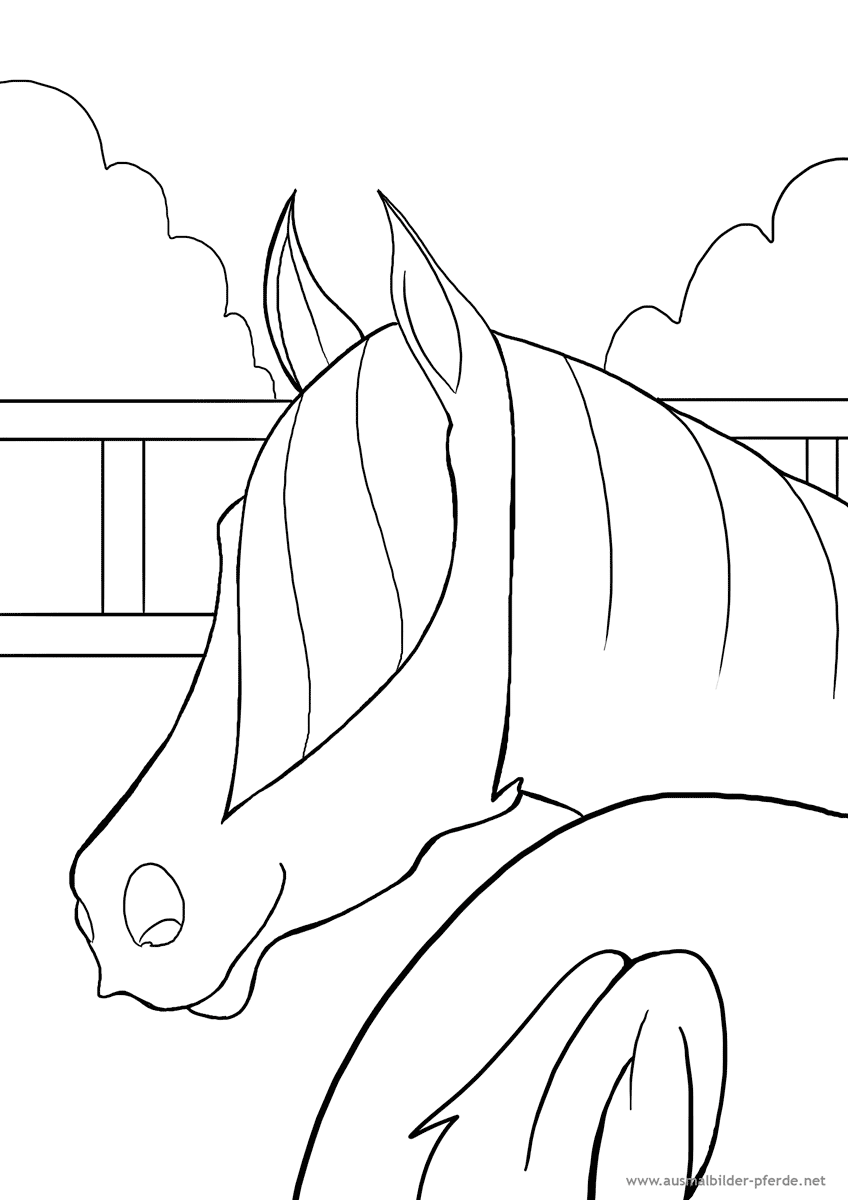 Malvorlage | Ausmalbilder Pferde - viele Malvorlagen mit Pferden