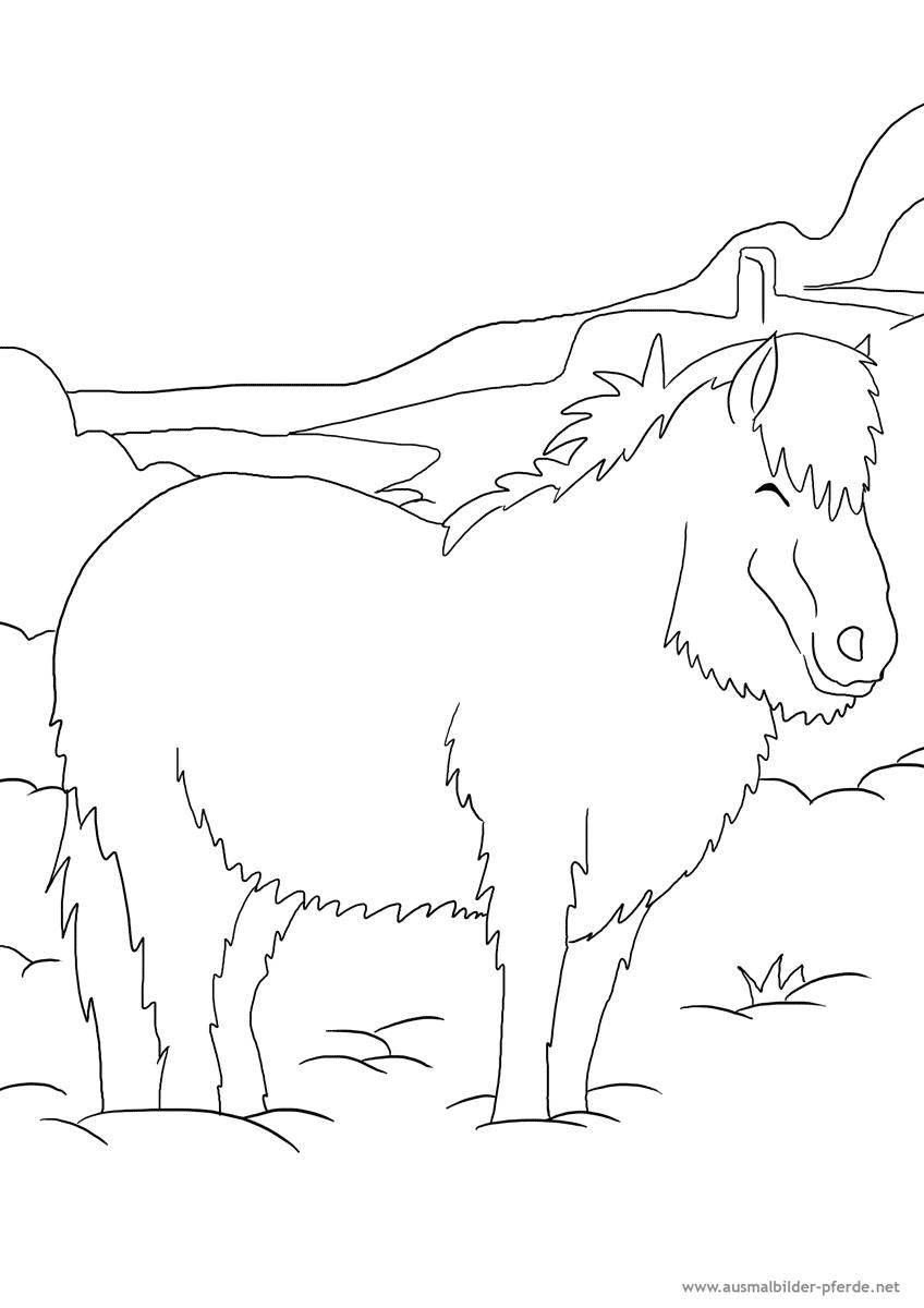 ausmalbild pferd nr. 18 | ausmalbilder pferde - viele