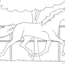 Ausmalbilder-Pferde Nr. 19