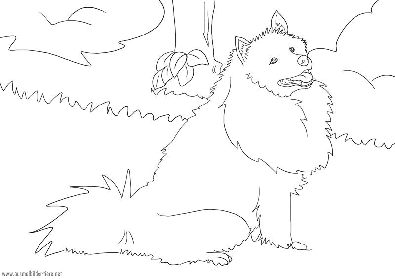 Hundebild zum Ausmalen